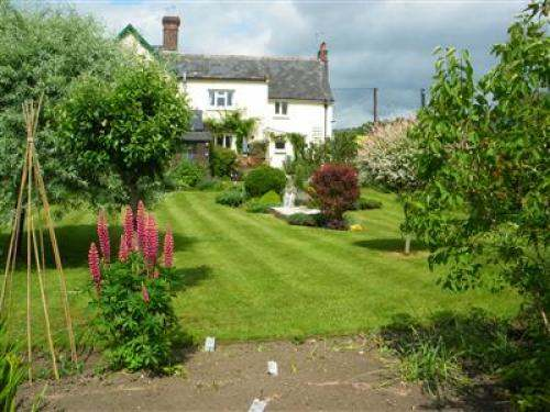 Chitcombe Cottage