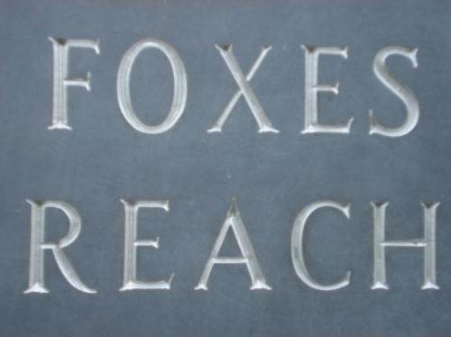 Foxes Reach